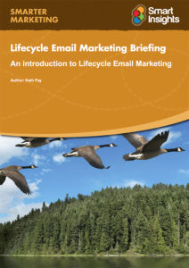 Lifecycle Email Marketing Briefing